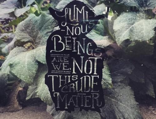 Niech CAŁA Moc będzie z Tobą! Parę słów o psychologii, Jungu i Gwiezdnych Wojnach